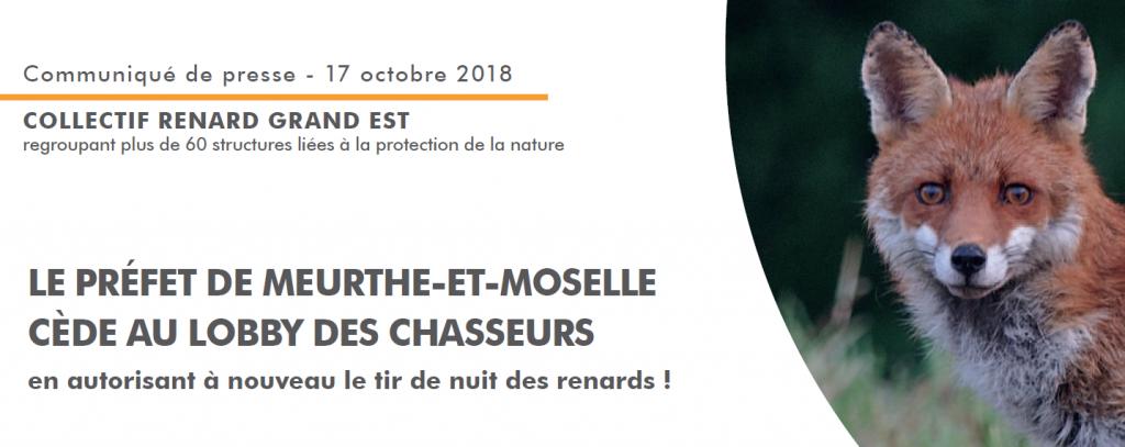 Communiqué de presse contre le tir de renard la nuit en Meurthe-et-Moselle