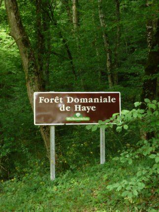 Fêtons le classement de la Forêt de Haye le dimanche 18 novembre 2018